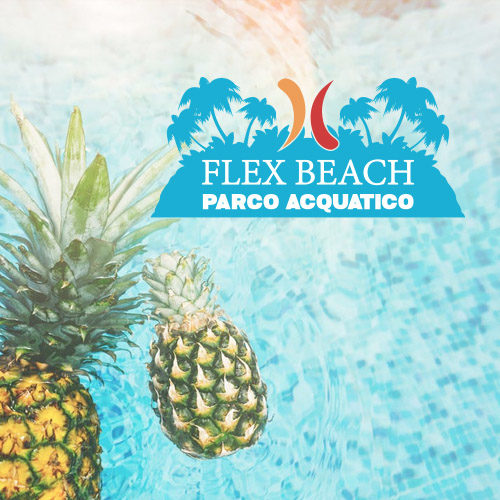 FLEX BEACH . FLEX VILLAGE
